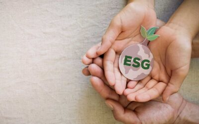 The Impact of ESG Investment on the Plant-Based Food Market